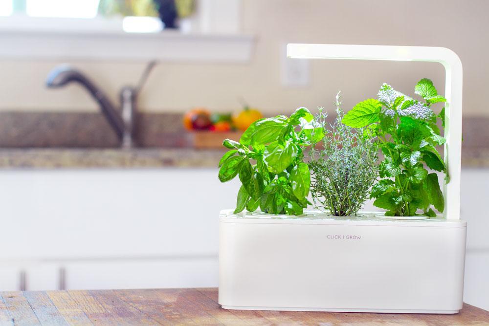 7 Amazing High-Tech Kitchen Gadgets