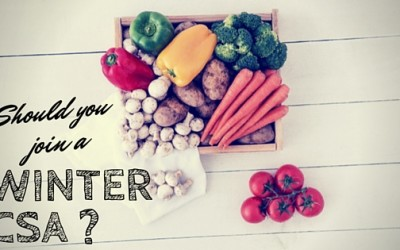 Should You Join a Winter CSA?