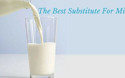 What's the Best Substitute for Milk?